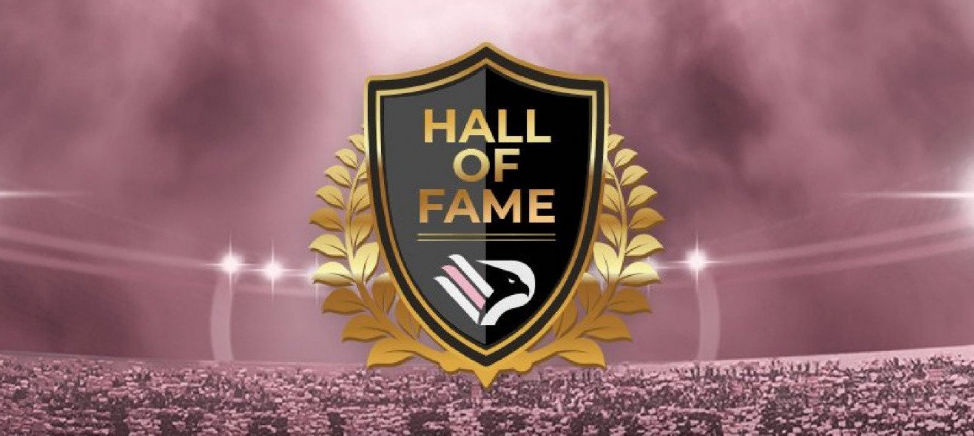 HALL OF FAME PALERMO SOCCER: THE FANS HAVE CHOSEN THE 11 (+1) MOST REPRESENTATIVE OF THE ROSANERO HISTORY