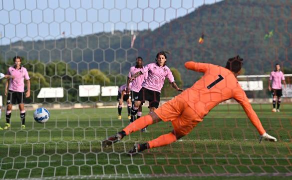 Palermo-Salernitana 1-2: highlights